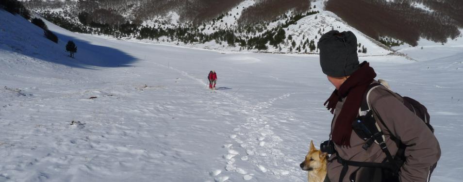 Neve e Ciaspole
