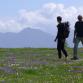 Hiking and activities calendar