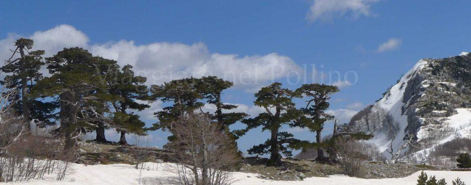 Calendario Escursioni Primavera