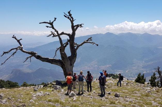 Escursionisti Pollinello